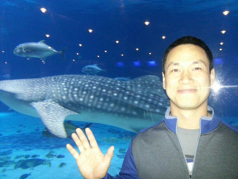 aquarium (2)